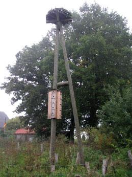 Nisthilfe auf Holzmast