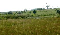 LB 129 Feuchtwiese südwestlich der Jahnstraße am Datteln-Hamm-Kanal