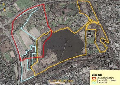 Luftbild des Untersuchungsgebietes im NSG Hallerey