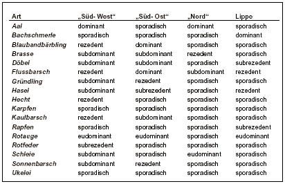 Frequenzklassen adulter Fischarten in der Lippe und den Altarmen bei Werne