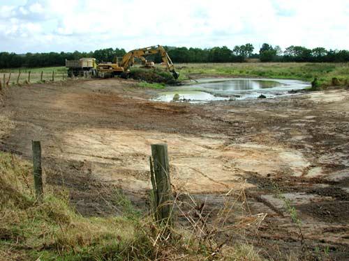 Massnahmen zur Optimierung eines Kleingewässers